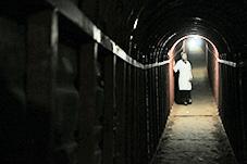 bilde fra The Cave