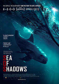 Sea of Shadows plakat
